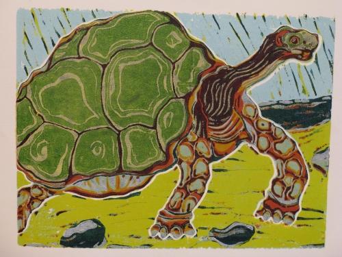schildpad staat 10
