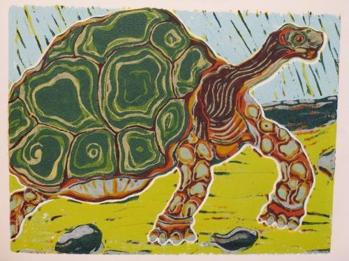 schildpad staat 11