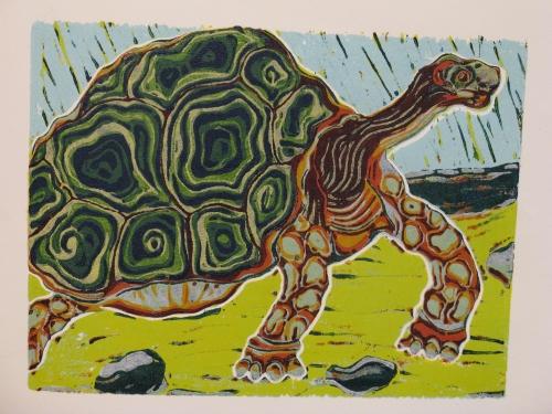 schildpad staat 12