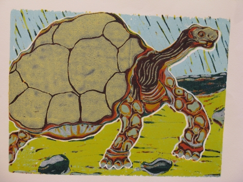 schildpad staat 9